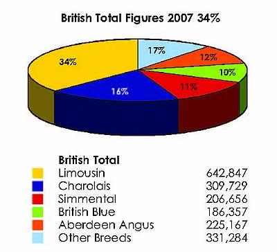 British Total Figures 2007