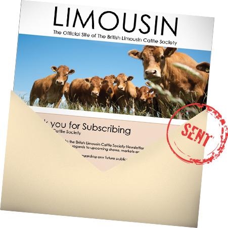 Limousin Newsletter